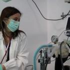 Veterinari-Mirano (20)